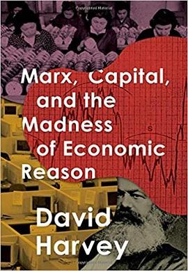 1-مارکس، سرمایه و جنون خرد اقتصادی